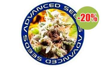 advanced seeds autofloreceintes