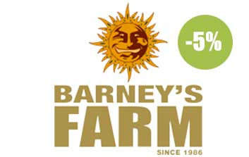 barney's farm autofloreceintes