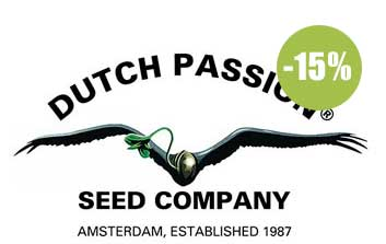 Dutch Passion Seeds autofloreceintes