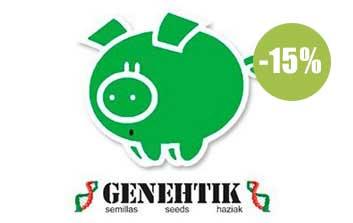 genehtik seeds autofloreceintes