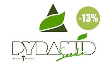 pyramid seeds autofloreceintes
